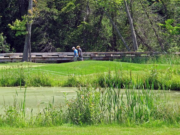 Pines of Georgina Golf Course